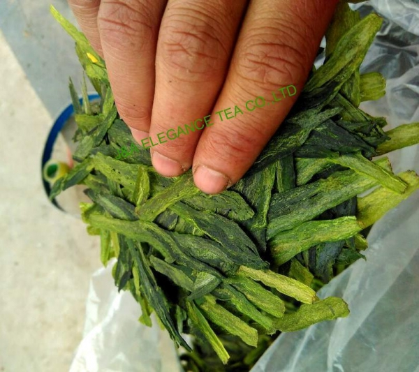Buy Taiping Houkui green tea at wholesale prices