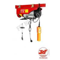 Quality Min-electric hoist for sale