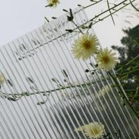 Quality anti-fog polycarbonate sheet for greenhouse for sale
