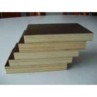 Top quality Brown film faced plywood For Sale in china/18mm film faced plywood