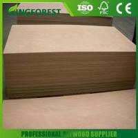 China Plywood Hot selling door skin plywood home depot with low price on sale