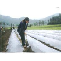 Quality Agricultural Film for sale