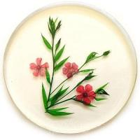 Best flower pressed crystal coaster,tablemat, decoration,furnishings,home decor wholesale