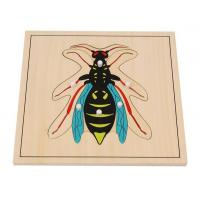 Quality Teaching Aids Wasp Puzzle for sale