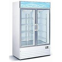 Commercial Doors Commercial Restaurant Glass Double 2 Door Reach in Freezer Ice Merchandiser