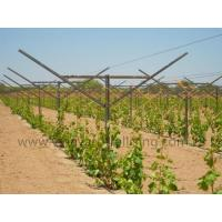Quality Open Gable Trellis System for sale