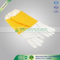 Quality FS04 Beekeeping glove for sale