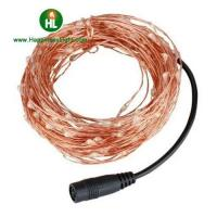 Quality DC Powered Copper Wire String Lights for sale