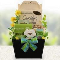 Quality Doggie Wags Dog Gift Basket for sale
