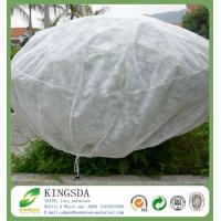 Quality Agricultural Use Polypropylene Non Woven Weed Control Fabric for sale