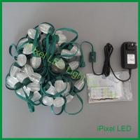 China LED Pixel Light D24 Digital LED Christmas Light on sale