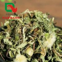 China Chinese herbs Pu gong ying on sale