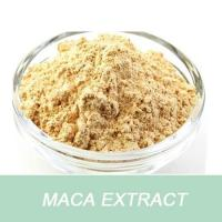 China Free sample high quality helps some women alleviate menopausal symptoms product Maca P.E. powder on sale