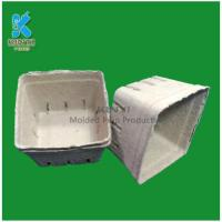 Buy cheap Biodegradable fiber pulp paper fiber hanging baskets customized from wholesalers