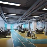 China gym interior design best gym websites design gym design layout gym interior design ideas on sale