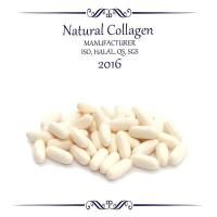 Quality Food Grade Collagen Collagen Capsule for sale