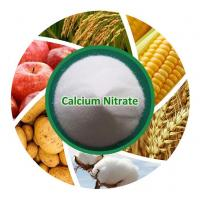 China Chemicals Fertilizer Manufacture Calcium Nitrate Price on sale
