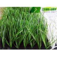 Buy cheap S Shape Football Grass from wholesalers