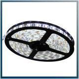 Best Led Lamps DC12V&AC220V Waterproof LED Strip Light, LED Light Bar (F-M1) wholesale