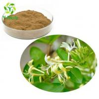 Buy cheap HoneySuchle Flowers Extract from wholesalers