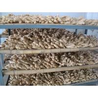 Buy cheap Air Dried Ginger from wholesalers