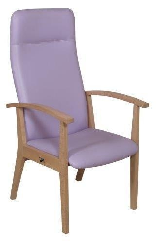 Buy Healthcare and education Amelia armchair at wholesale prices