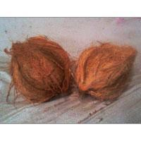 Buy cheap Indian Coconut from wholesalers