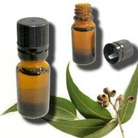 Buy cheap Eucalyptus Oil from wholesalers